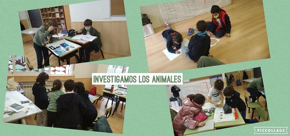 INVESTIGAMOS LOS ANIMALES