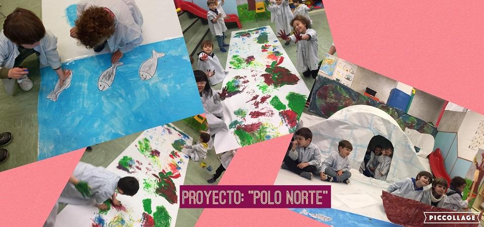 proyecto Polo norte