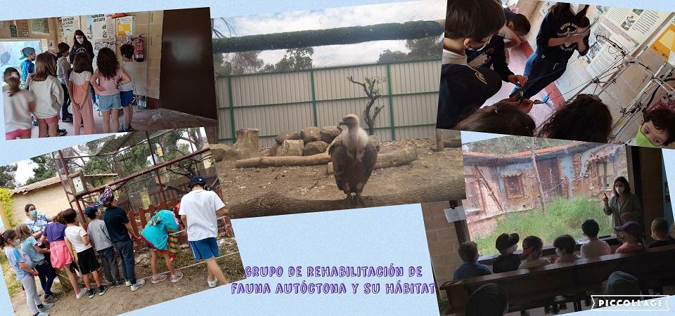 PRIMARIA VISITA GREFA2